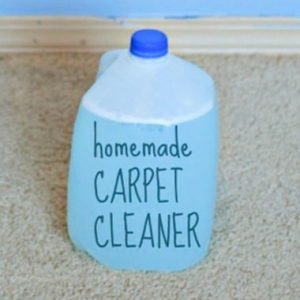 Subsute For Bis Carpet Cleaner